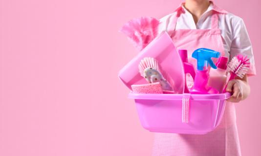 Pelos de tu mascota en el hogar elim nalos efe blog - Limpieza a fondo casa ...