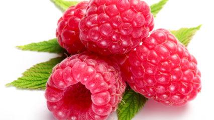 Raspberry ketone el suplemento que te ayuda a adelgazar